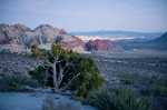 Red Rock Canyon and Las Vegas, NV