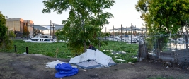 Homeless tent, hyacinth and yachts, Stockton