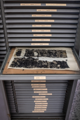 Papyri Collection, Biblioteca Nazionale di Napoli