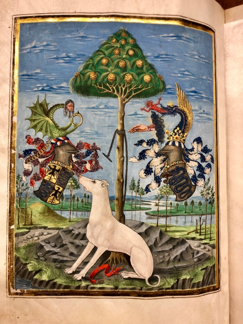 Codex De Sphaera-1469 Allegory
