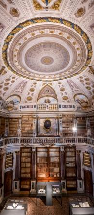Public Library, Imola